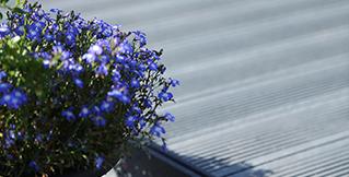 Terrasse belægning i vedligeholdelsesfrit genbrugsplast GOVA home+ PLAST recycling forhandler BY BANG terrasse, belægning, vådeområder, marina, bro, sti, planker