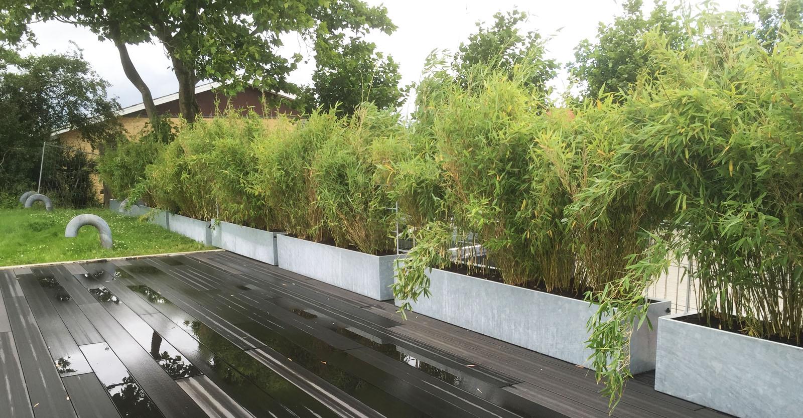 Vedligeholdelsesfri plantekumme